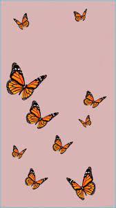 Cute Butterfly Wallpapers ...