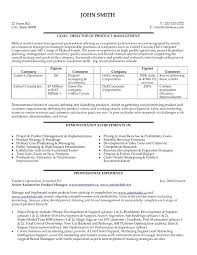 Examples Of Project Management Resumes Technical Project Manager ...