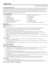 Business Intelligence Manager Resume Proyectoportal Com