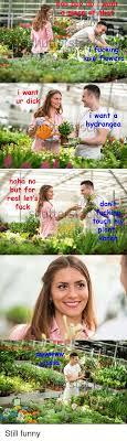 25 Best Memes About Lets Fuck Lets Fuck Memes