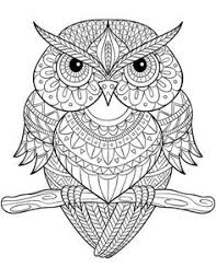 Cute Owl Coloring Pages For Girls Printable 16 Best Owl Coloring