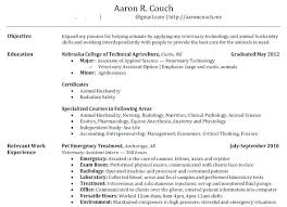 Create Resume Templates Interesting How To Make A Resume For Job Create Resume For Job How To Create
