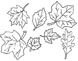 Small Picture Fall Leaves Template Coloring Page Coloring Coloring Pages