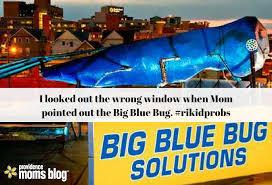 Big Blue Bug Solutions Rhode Island Kid Problems