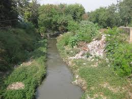 hari batti s green light dhaba world water day special delhi s  hari batti s green light dhaba world water day special delhi s nallahs