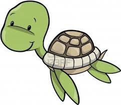 Small Picture Simple Turtle Drawings 1a31099c5ed4f35eec12364e7f3ce016jpg