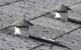 asbestos roofing thedollarbusiness