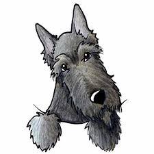 תוצאת תמונה עבור sad terrier dog