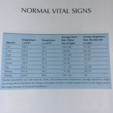Normal Vital Signs In Animals From Tasks For The Veterinary