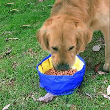 2018 big volume dog drinking container folding dog water bowl food storage bag outdoor hiking travel folding pet bowl 1100ml from chinese service01