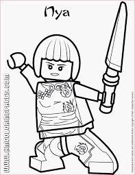Lego Ninjago Afbeeldingen Divers 49 Best Festa Ninjago Images On
