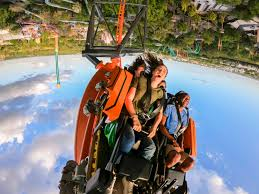 triple launch coaster tigris to officially open friday april 19 at busch gardens tampa