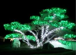Image Diy nikka Yuko Japanese Gardenfacebook Cbcca Winter Lights Illuminate Natural Beauty Of Lethbridge Japanese