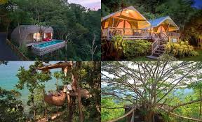 HOTEL ALTERNATIVES CASTLES TREE HOUSES PRISONS CAVES TIME SHARESTreehouse In Thailand
