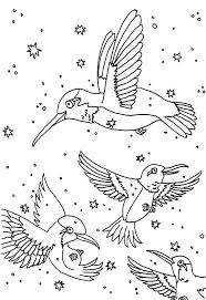 Small Picture Free hummingbird coloring pages for adults ColoringStar