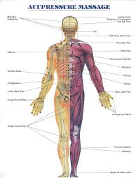 Acupressure And Reflexology Chart