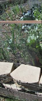 electric net fencing