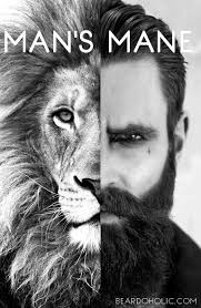 Beard Quotes New Best Beard Memes And Quotes Beardoholic