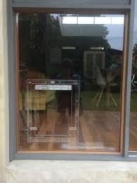 doggie door in glass door throughout dog door for sliding glass door dog door for sliding