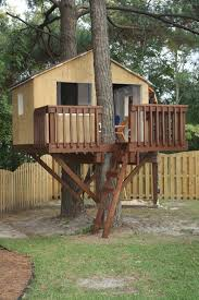 Two trees one great treehouse Carolina Country