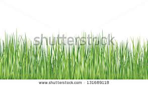 summer outdoor backgrounds. Grass Seamless Border Summer Outdoor Background Nature Skyline Backgrounds C