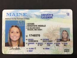 Fake Id A Use Undetected Legit - Naturled For Staying