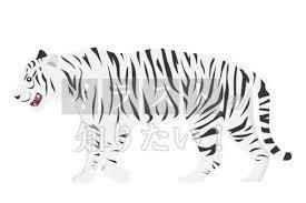 虎 イラストの検索結果 Yahoo検索画像