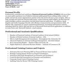 Internal Auditor Resume Objective Sample Auditor Resume Objectives Sidemcicek Com Internal Front 45