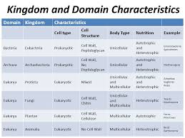 Kingdoms And Domains Ppt Video Online Download