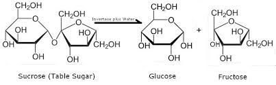 structure chemistry edit figure 1 invertase hydrolyzes sucrose into glucose and fructose