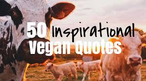 Vegan Quotes Adorable 48 Inspirational Vegan Quotes Burger Abroad