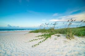 Visit Vero Beach Florida | Official Travel & Tourism Information
