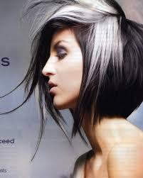 Silver Hair Dye Brands Great