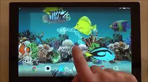 Coral fish 3D live wallpaper for ...