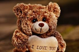 Image result for valentines day cute pictures