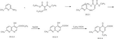 nalidixic acid an overview