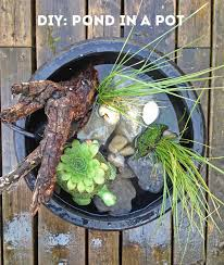 diy make your own pond in a pot the