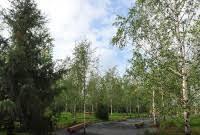 """отзывы о : Парк """"Зарядье"""" - Отдых с детьми - OSD.RU"""