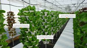 hydroponic vertical garden. Vertical Hydroponic Farming Systems Garden