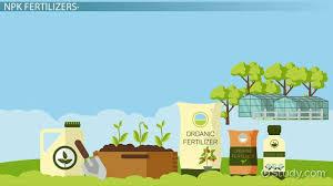 Npk Fertilizers Definition Uses
