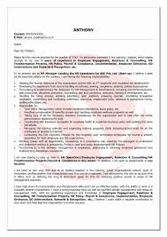 Curriculum Vitae What Is It Letter Sample Collection