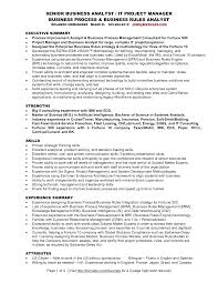 Senior IT Project Manager Featuring Rules Analyst For Business Analyst  Resume Samples