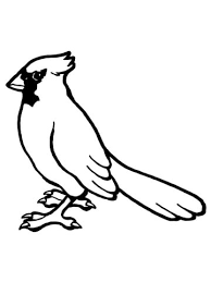Nothern Cardinal Bird Coloring Page Free Printable Coloring Pages