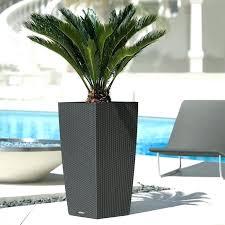 discount garden planters cheap large planters planters large black garden  planters inexpensive large planter ideas outdoor .