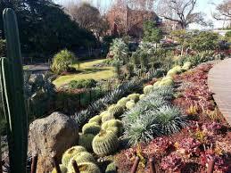large size of decoration backyard vegetable garden design ideas chinese garden design ideas succulent plants garden