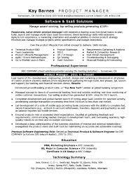 Quality Assurance Manager Resume Joefitnessstore Com