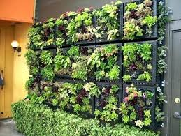 indoor hydroponic vegetable garden. Indoor Vegetable Garden Ideas Easy Living Inside . Hydroponic