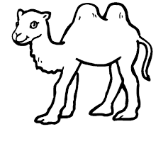 Small Picture Free Printable Camel Coloring Pages For Kids Animal Place