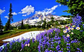 spring landscape wallpaper. spring landscape wallpapers high definition wallpaper /