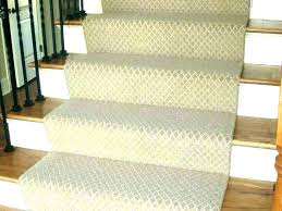 indoor outdoor runner rugs full size of home depot indoor outdoor runner rugs stair magnolia rug